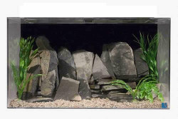"SeaClear 150-Gallon 48""Hx24""Wx30""H Rectangular Acrylic Fish Tank"