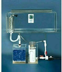 "Clear-for-Life Deluxe 125-Gallon 72""Lx18""Wx20""H Rectangular Acrylic Aquarium"