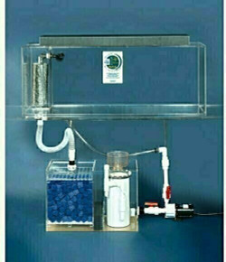"Clear-for-Life Deluxe 135-Gallon 72""Lx18""Wx24""H Rectangular Acrylic Aquarium"