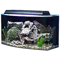 """SeaClear 36-Gallon 30""""Lx15""""Wx21""""H Bow Front Acrylic Fish Tank"""