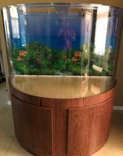 "Tsunami 100-Gallon 48""Lx24""Wx24""H Half Cylinder Acrylic Aquarium Setup"