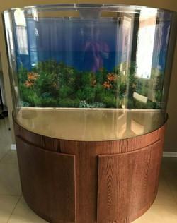 "Tsunami 210-Gallon 72""Lx36""Wx24""H Half Cylinder Acrylic Aquarium Setup"