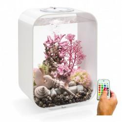 biOrb LIFE 4-Gallon White MCR Aquarium