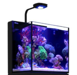 Red Sea Max Nano 20G Plug & Play Reef System - No Cabinet