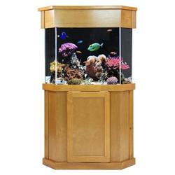 Clear-for-Life 75-Gallon Pentagon Acrylic Aquarium Setup