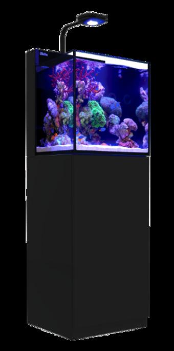 Red Sea Max Nano Black 20-Gallon All-in-One Saltwater Aquarium