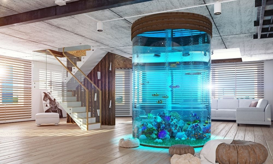 The Life-Changing Health Benefits of Aquariums