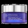 Dr Dennis Gross B3 Adaptive Superfoods Stress SOS Eye Cream