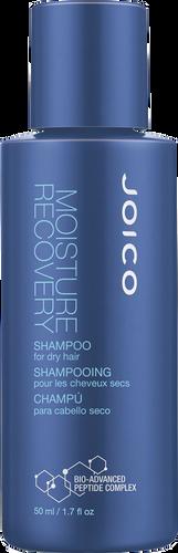 Joico Moisture Recovery Travel Shampoo