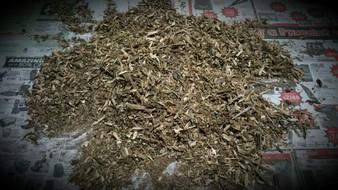 Agarwood/Aloeswood Oud, AA Burmese dust 20grams