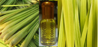Premium LemonGrass oil - pure (6cc) (Burma origin) - free shipping
