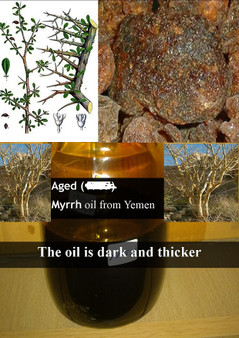 Pure Aged Myrrh oil - Royal Quality 12ml (medium thick & dark coloured oil) non alcoholic