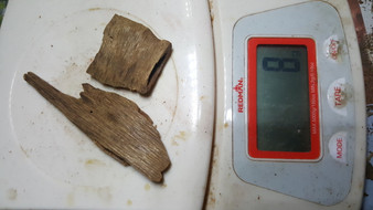 Agarwood/Aloeswood Oud chips, W Kalimantan 8 grams..