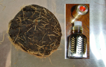 MUSK: Tonkin wild deer musk oil fragrance - non alcoholic(6cc)