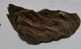 Agarwood/Aloeswood Oud chips, Burma 1 piece 19 grams waterfall wall