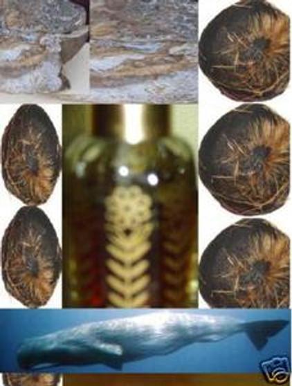 MuskAmber oil fragrance-non alcoholic (6cc)