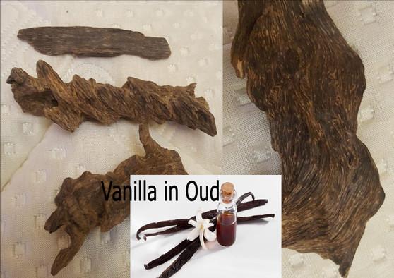 Pure Vanilla essential oil in Oud oil 6cc