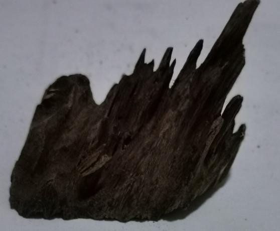 Agarwood/Aloeswood Oud chips, Burma 1 piece 13 grams