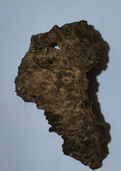 Agarwood/Aloeswood Oud chips, Burma 1 piece 21 grams