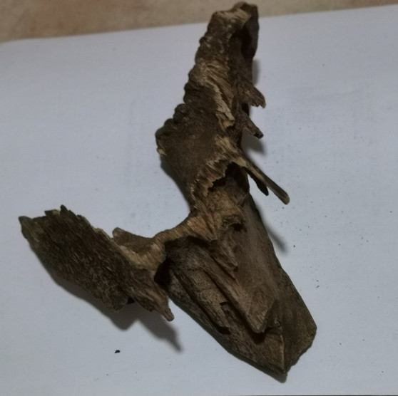 Agarwood/Aloeswood Oud chips, Burma 1 piece 44 grams