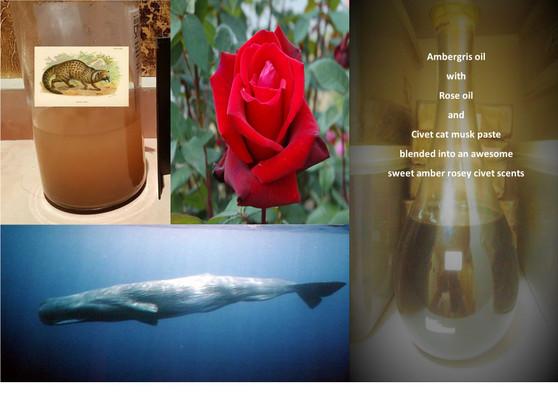 Attar Amber Rose Civet fragrance-non alcoholic (24cc) batch 11102020