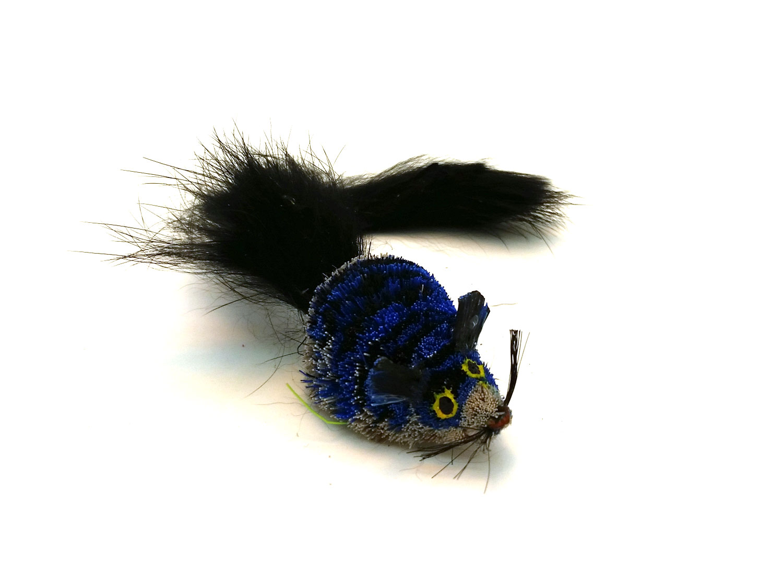 blue-mouse-black-tail.jpg