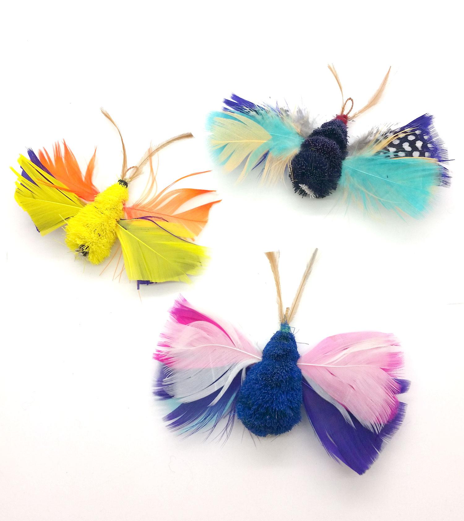 butterflyCatteasers.jpg