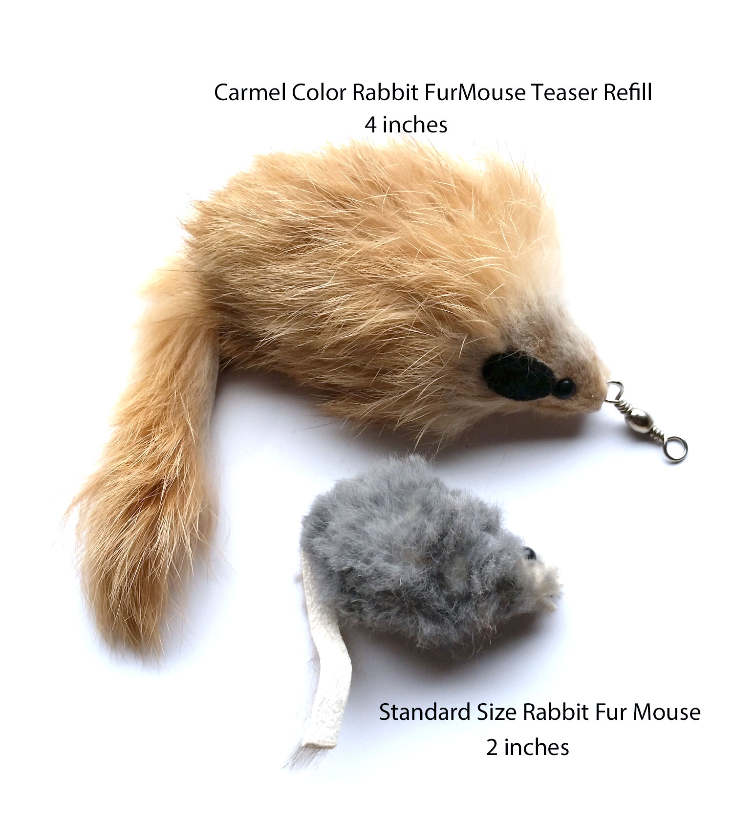 carmel-mouse-comparison.jpg
