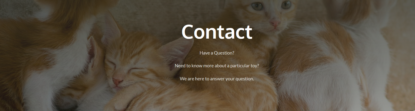 contact-pic.png