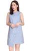 Polka Dot Overlay Dress
