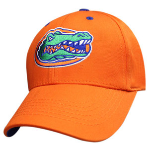 Premium Color Logo: Florida Gators - Orange