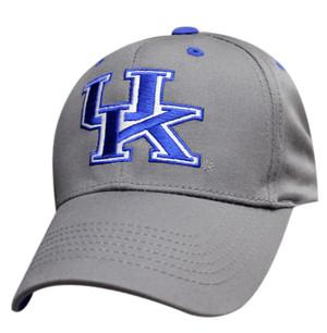 Premium Color Logo: Kentucky Wildcats - Gray