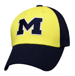 Premium 2-Tone Logo Plus: Michigan Wolverines
