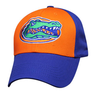 Premium Logo Mesh Back: Florida Gators
