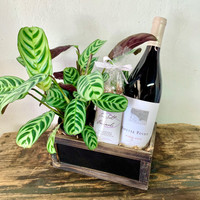 Plant & Pinot Noir Crate