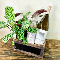 Plant Cheer Chardonnay & Sweets Crate