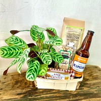 Plant Some Cheer Craft Beer Crate