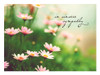 KJV Boxed Cards - Sympathy, God's Light (NEW) by Heartwarming Thoughts
