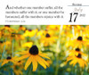 Daily desk calendar 2022 - tear off page with KJV Bible Verse and nature scene