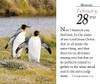 Verse for the Day Daily desk calendar 2022 - tear off page with KJV Bible Verse and penguins