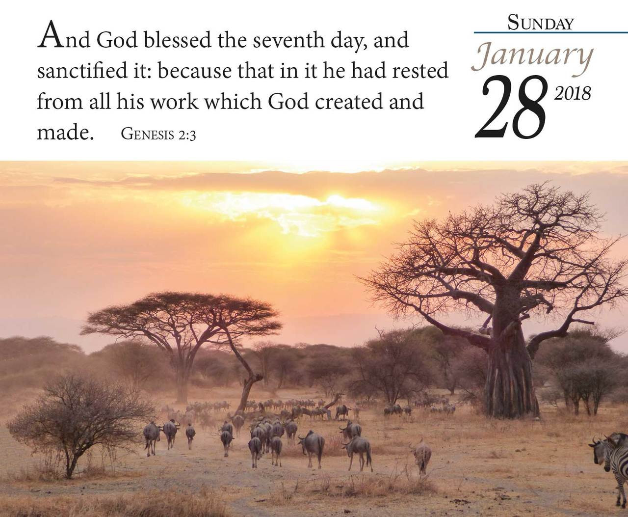 Bible Verse for the Day - 365 Pages Daily Desk Calendar 2018 - KJV Scripture