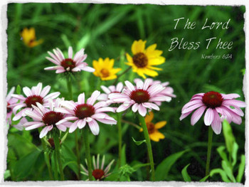 The Lord Bless Thee - 5 Blank Notecards