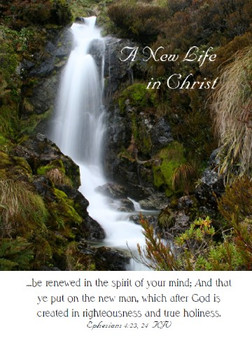 """A New life in Christ - 5"""" x 7"""" KJV Greeting Card 64"""