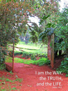 I am the Way - 5 Blank Notecards