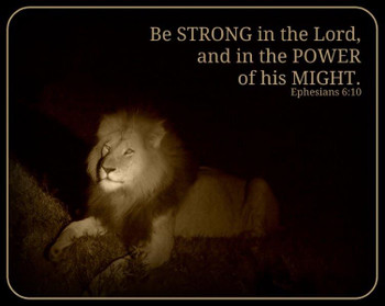 Be Strong (lion) - 5 Blank Notecards