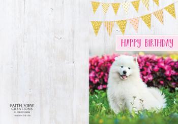 KJV Boxed Cards -  Fluffy Animal Friends - Children's Birthday Cards