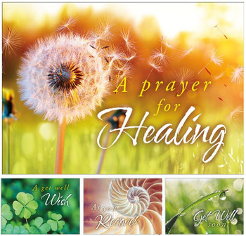 KJV Boxed Cards - Get Well, Get Well Wishes