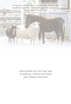 KJV Boxed Cards - Christmas, Barnyard Buddies by Heartwarming Thought
