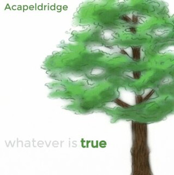 Whatever Is... CD Set of 5 by Acapeldridge