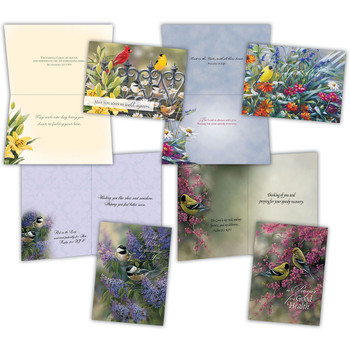 KJV Boxed Cards - Get Well III (Beautiful Birds) by Shared Blessings